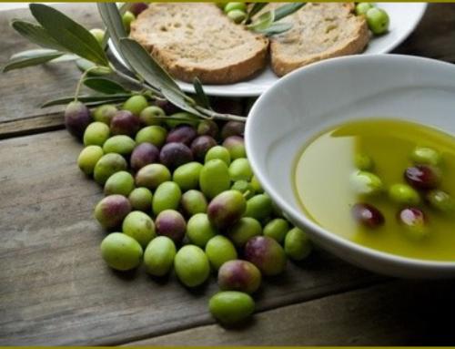 L'ABC dell'olio extravergine di oliva